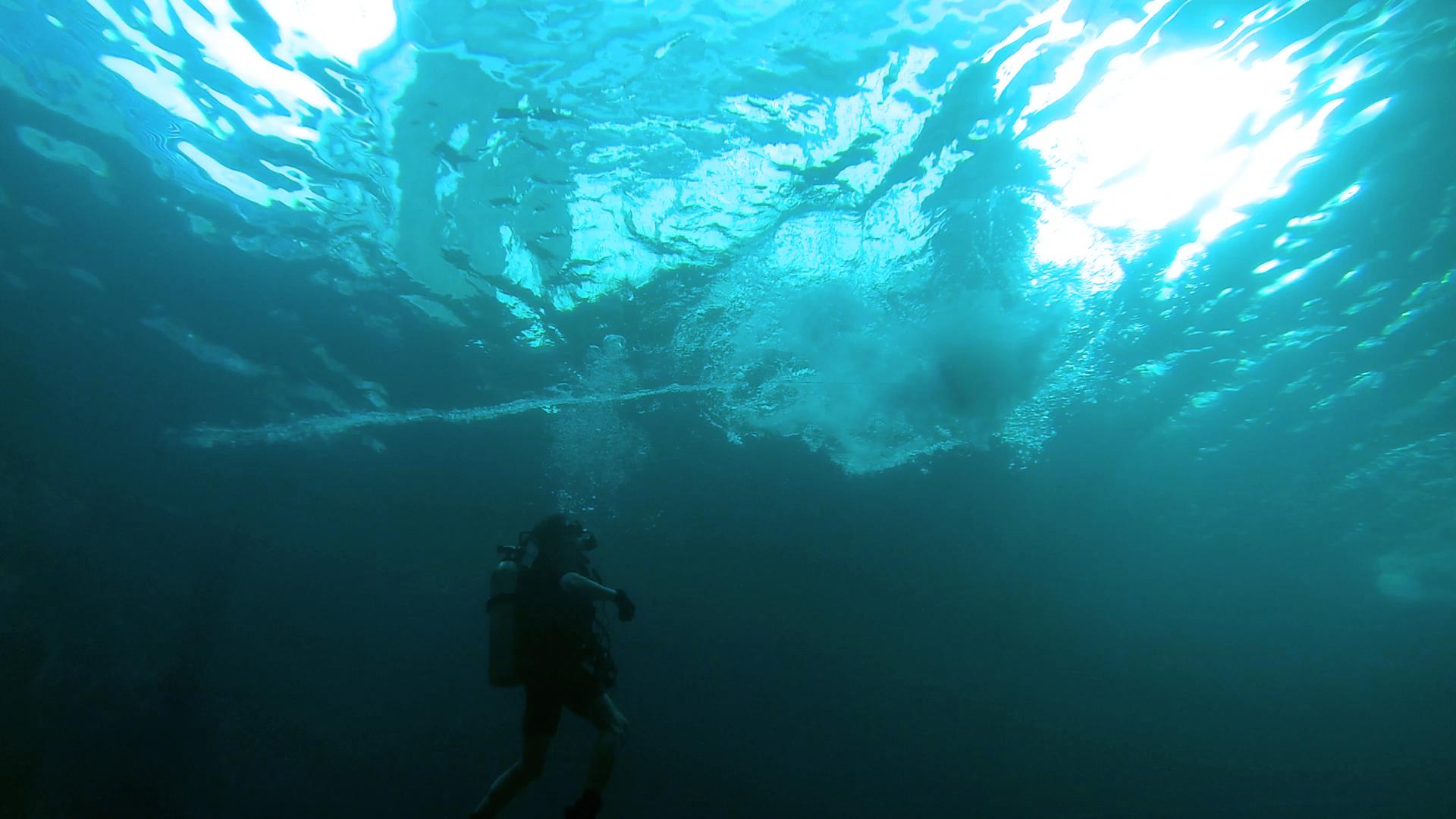 MG Action, Martin Goeres, Stuntperformer, Diving, Taucher